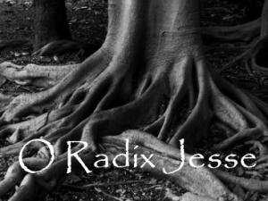 o-radix